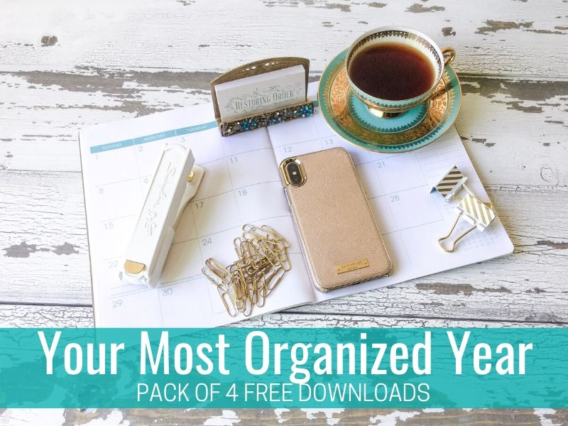 Your Most Organized Year: Free Guide (PDF Download)