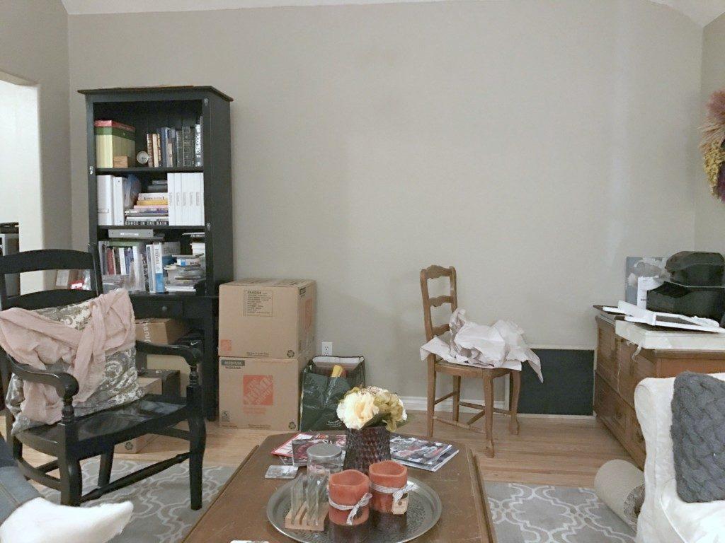 Bookshelf and Living Room Before
