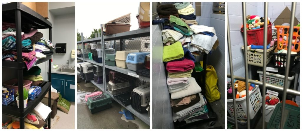 MGDO - WHS Workplace Organized Donations Before