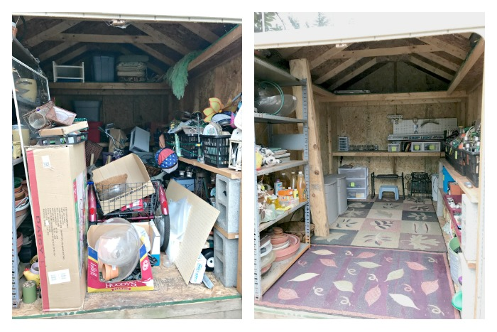 Overhauling Your Shed Before and After