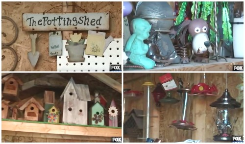Overhauling Your Shed - Make it Beautiful