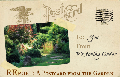 REport: A Postcard from the Garden